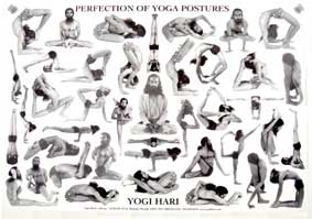 Perfection Of Yoga Postures Chart