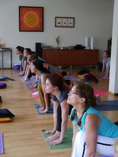 Two Hatha Yoga classes daily help you to improve your practice