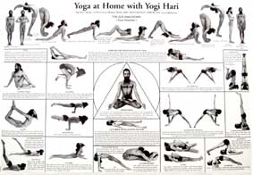 yoga books yoga charts